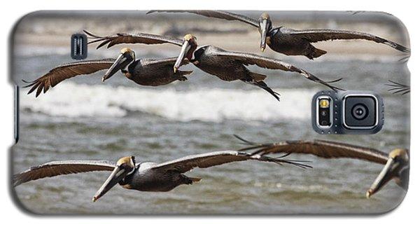 Flying In Galaxy S5 Case