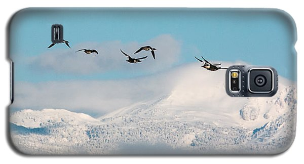 Flying North Galaxy S5 Case