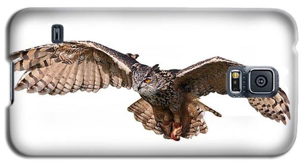 Flying Owl Galaxy S5 Case