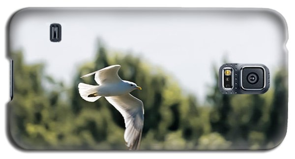 Galaxy S5 Case featuring the photograph Flying Seagull by Leif Sohlman