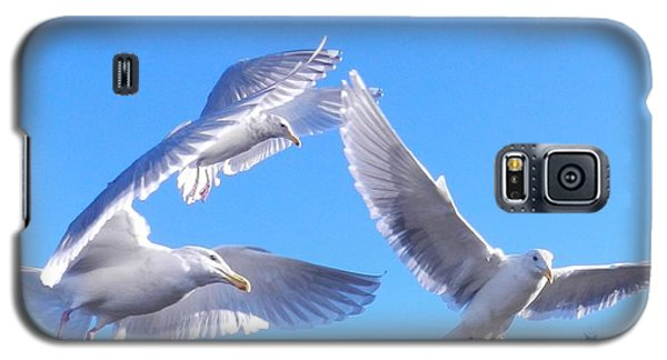Galaxy S5 Case featuring the photograph Flying Seagulls by Karen Molenaar Terrell