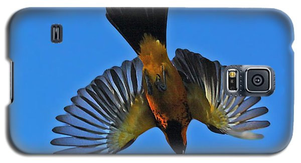 Flying Spot-breasted Oriole Galaxy S5 Case