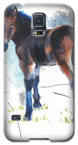 Foal Painting Galaxy S5 Case