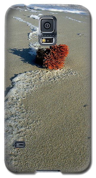Foam And Seaweed On The Beach Galaxy S5 Case by Allen Beilschmidt