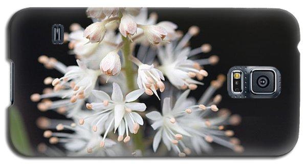Foam Flower Galaxy S5 Case by Melinda Fawver