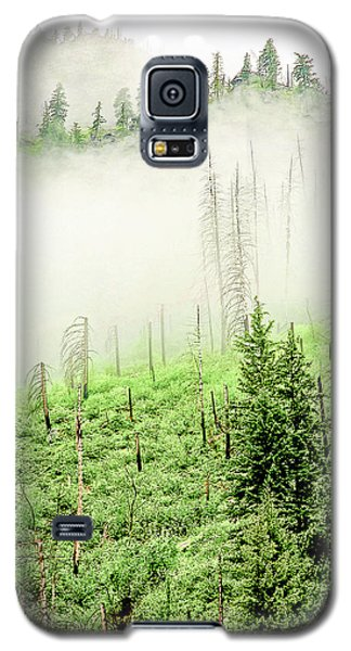 Fog And Trees Galaxy S5 Case
