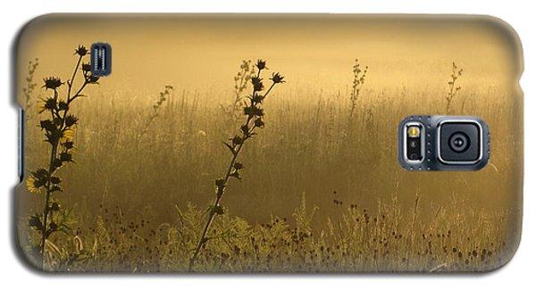 Fog At Dawn Galaxy S5 Case by Tim Good