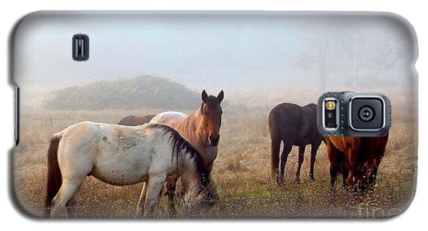 Fog Ponies Galaxy S5 Case