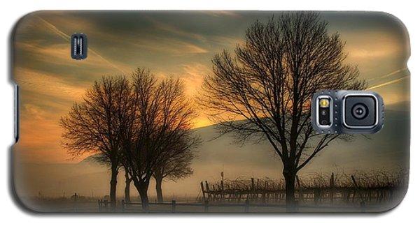 Foggy And Dreamy Galaxy S5 Case by Lynn Hopwood