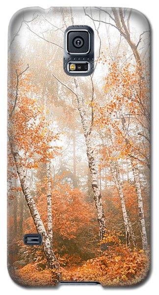 Foggy Autumn Aspens Galaxy S5 Case by Eti Reid