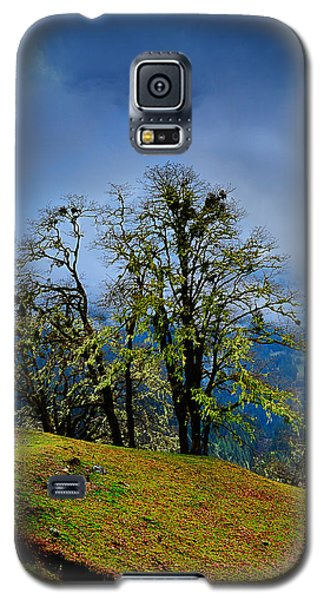 Foggy Day Galaxy S5 Case by Donald Fink