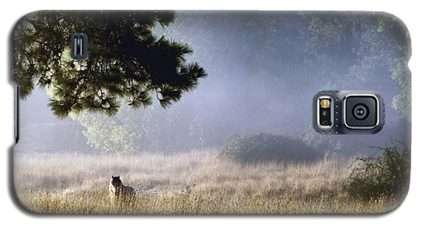 Galaxy S5 Case featuring the photograph Foggy Grotto by Julia Hassett