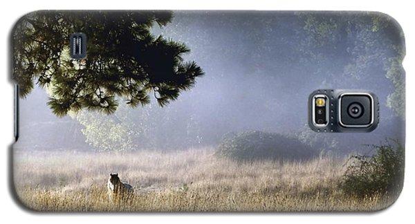 Foggy Grotto Galaxy S5 Case