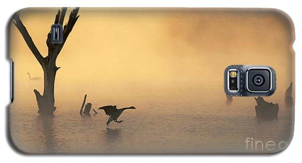 Foggy Landing Galaxy S5 Case by Elizabeth Winter