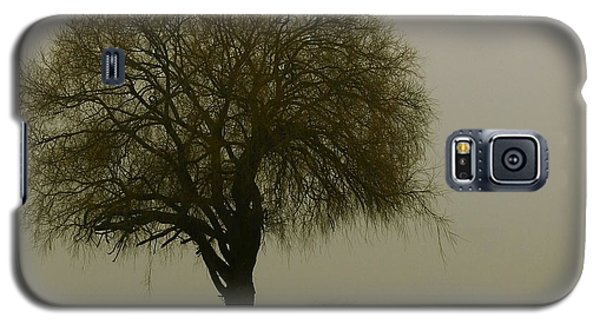Galaxy S5 Case featuring the photograph Foggy Morning by Franziskus Pfleghart