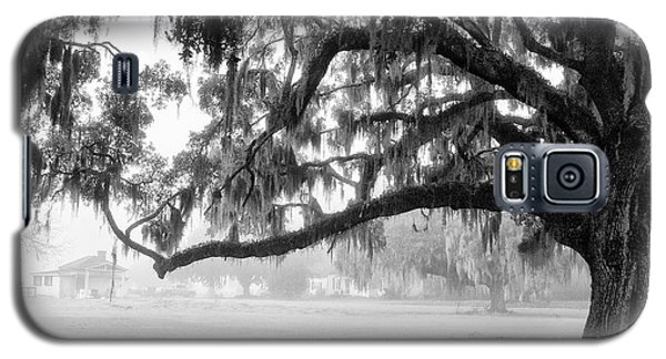 Foggy Morning On Coosaw Plantation Galaxy S5 Case