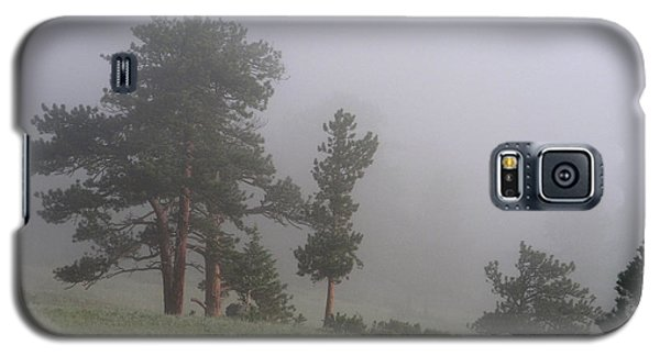 Galaxy S5 Case featuring the photograph Foggy Pines by Craig T Burgwardt