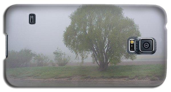 Foggy Elbe Tree Galaxy S5 Case