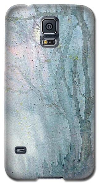 Foggy Trees Galaxy S5 Case