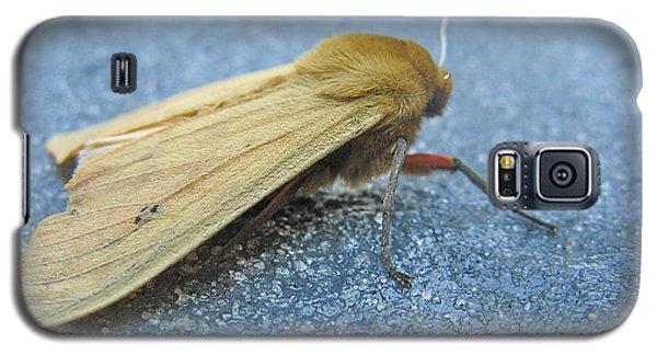 Fokker Moth Galaxy S5 Case