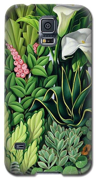 Garden Galaxy S5 Case - Foliage by Catherine Abel