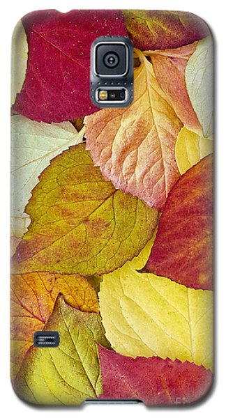 Foliage Quilt Galaxy S5 Case