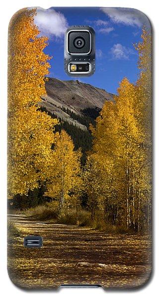Galaxy S5 Case featuring the photograph Follow The Gold by Ellen Heaverlo