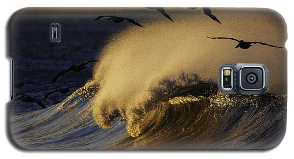 Galaxy S5 Case featuring the photograph Follow The Leader 73a2324 by David Orias