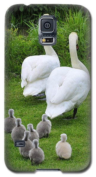 Galaxy S5 Case featuring the photograph Follow The Leader by Dan Myers