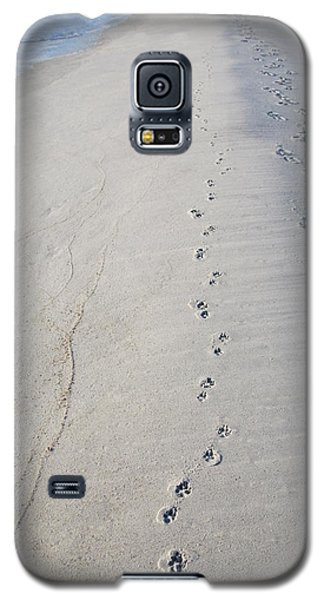Footprints And Pawprints Galaxy S5 Case