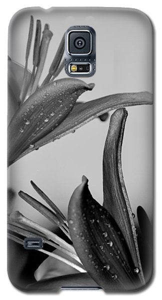 For The Love Of Lillies Bw Galaxy S5 Case by Lesa Fine