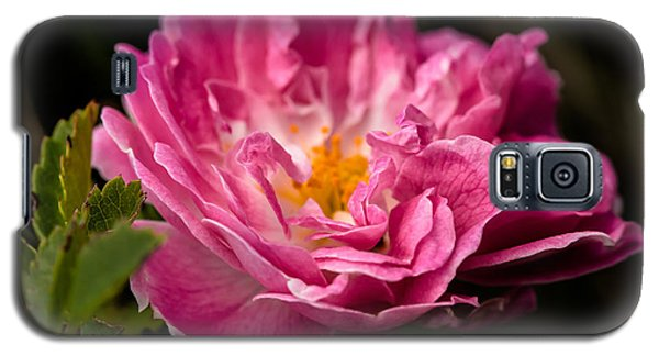 Galaxy S5 Case featuring the photograph For You by Edgar Laureano