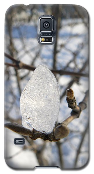 Galaxy S5 Case featuring the photograph For You by Jane Ford