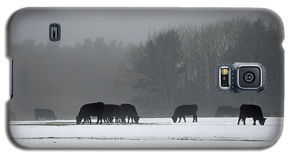 Galaxy S5 Case featuring the photograph Foraging by Glenn Gordon