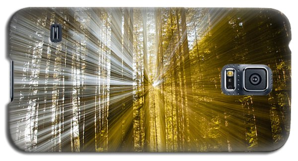 Forest Abstract Galaxy S5 Case