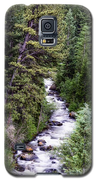 Galaxy S5 Case featuring the photograph Forest Cascade by The Forests Edge Photography - Diane Sandoval