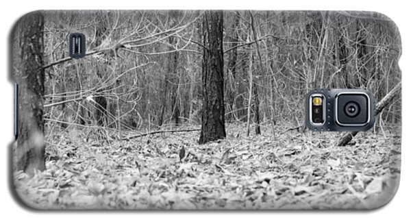 Forest Floor Black And White Galaxy S5 Case