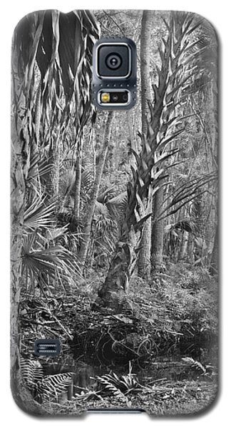 Forest Floor. Little Big Econ State Forest Seminole County.  Galaxy S5 Case