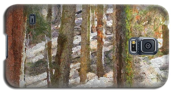 Forest For The Trees Galaxy S5 Case by Jeff Kolker