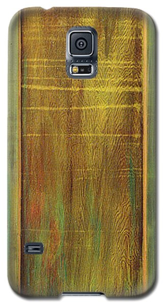 Forest Painted Door Galaxy S5 Case by Asha Carolyn Young