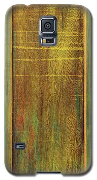Galaxy S5 Case featuring the sculpture Forest Painted Door by Asha Carolyn Young