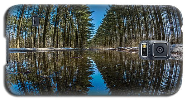 Forest Reflections Galaxy S5 Case
