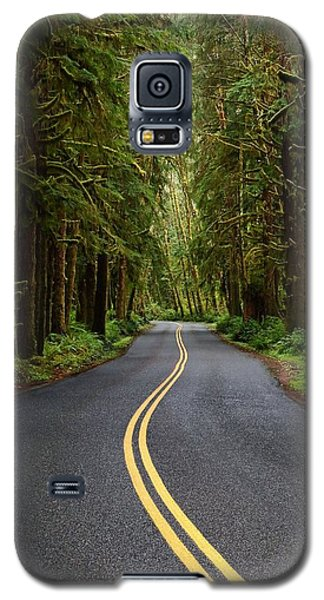 Forest Road Galaxy S5 Case by David Andersen