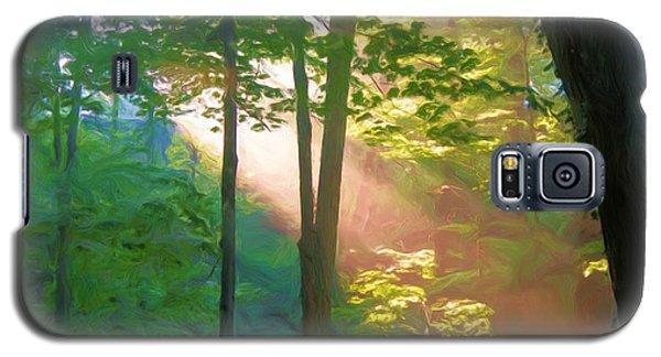 Forest Sunbeam Galaxy S5 Case by Dennis Lundell