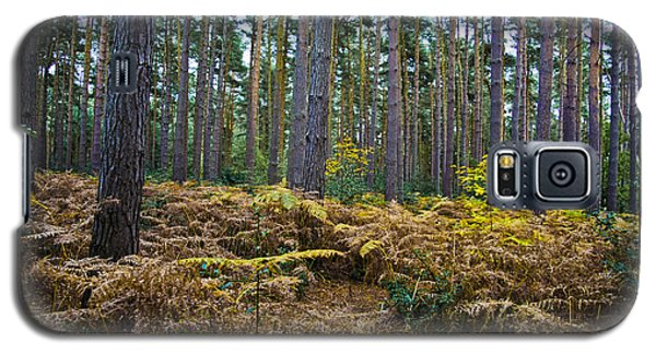 Galaxy S5 Case featuring the photograph Forest Trees by Maj Seda
