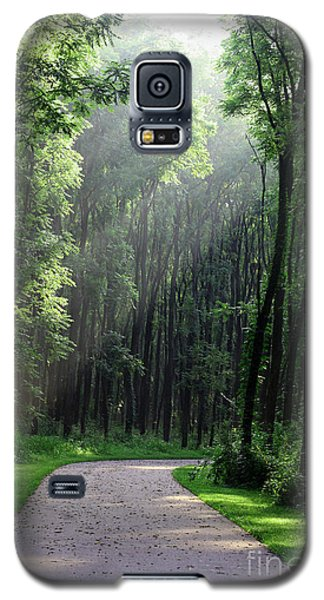 Galaxy S5 Case featuring the photograph Forest Walk by Anita Oakley