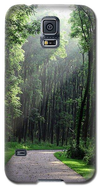 Forest Walk Galaxy S5 Case
