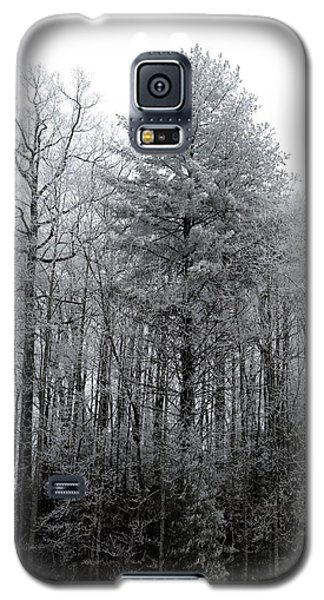 Forest With Freezing Fog Galaxy S5 Case by Daniel Reed