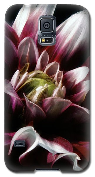 Forever Endeavor Galaxy S5 Case