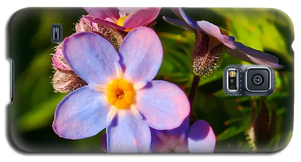 Forget-me-knots Galaxy S5 Case